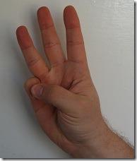 DSC_0261  - 3 fingers