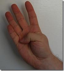 DSC_0262  - 4 fingers