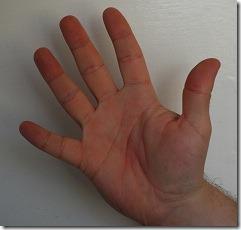 DSC_0263  - 5 fingers
