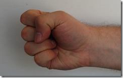 DSC_0264  - 0 fingers